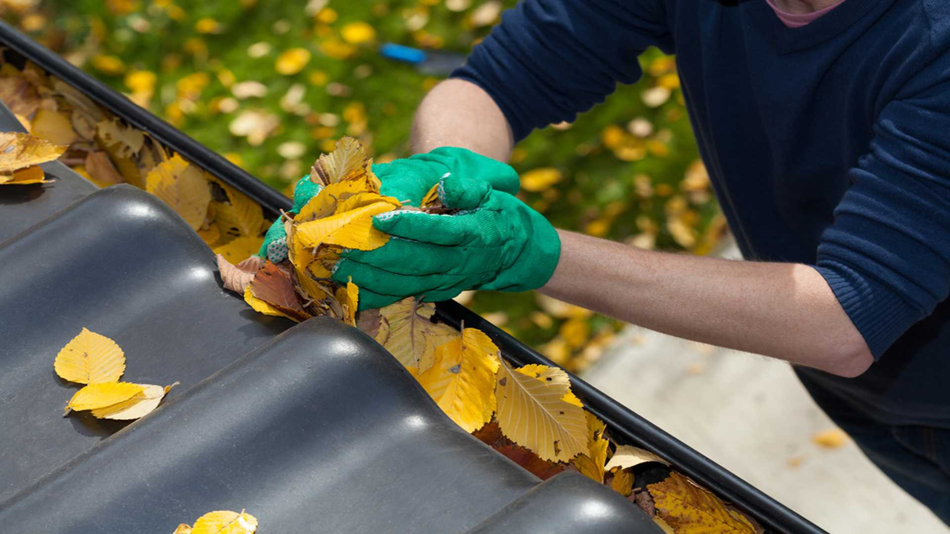 Cleaning Leaves Out Of Rain Gutter Gutter Repair And Gutter Cleaning Gutter Solutions and Home Improvements Pensacola FL